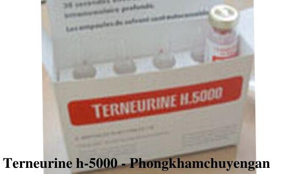 Thuoc Terneurine h-5000 mua o dau Thuoc Terneurine h 5000 gia bao nhieu